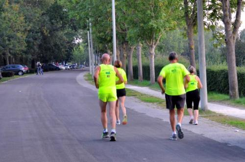 Herdenkingsloop MarathonWilly (11)